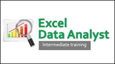 Excel Data Analyst