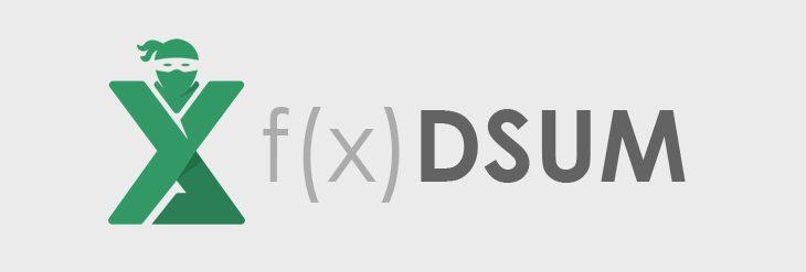Functia DSUM in Excel