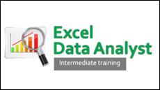 Excel Data Analyst