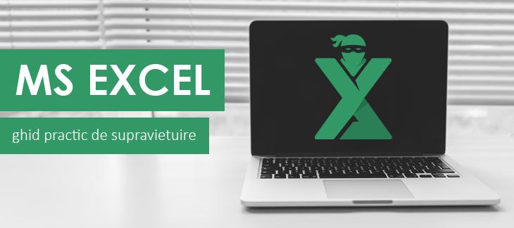 MS Excel - ghid practic de supravietuitre