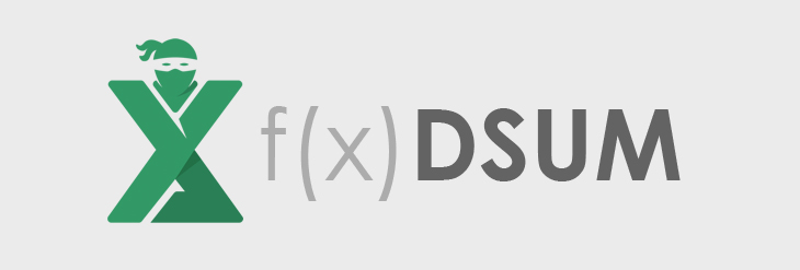 Functia DSUM Excel
