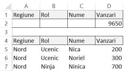 Functia DSUM Excel2