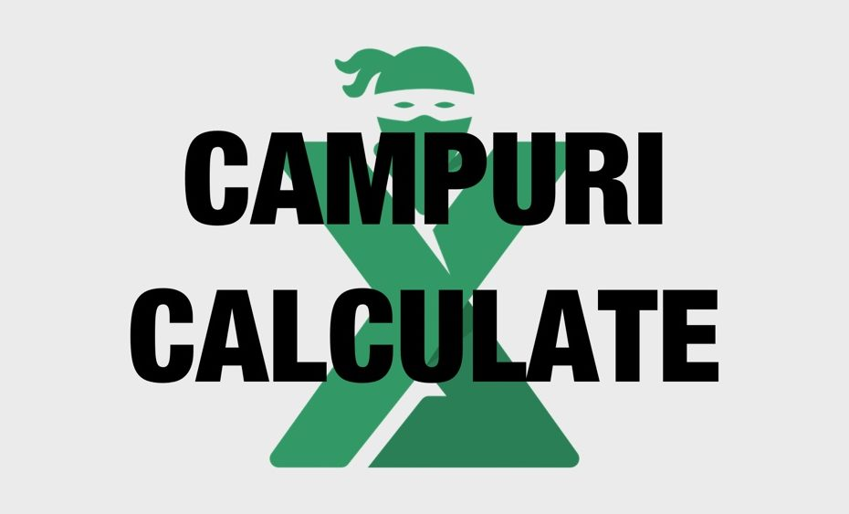 Campuri calculate Pivot Table